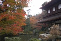 Ginkaku-ji in Autumn