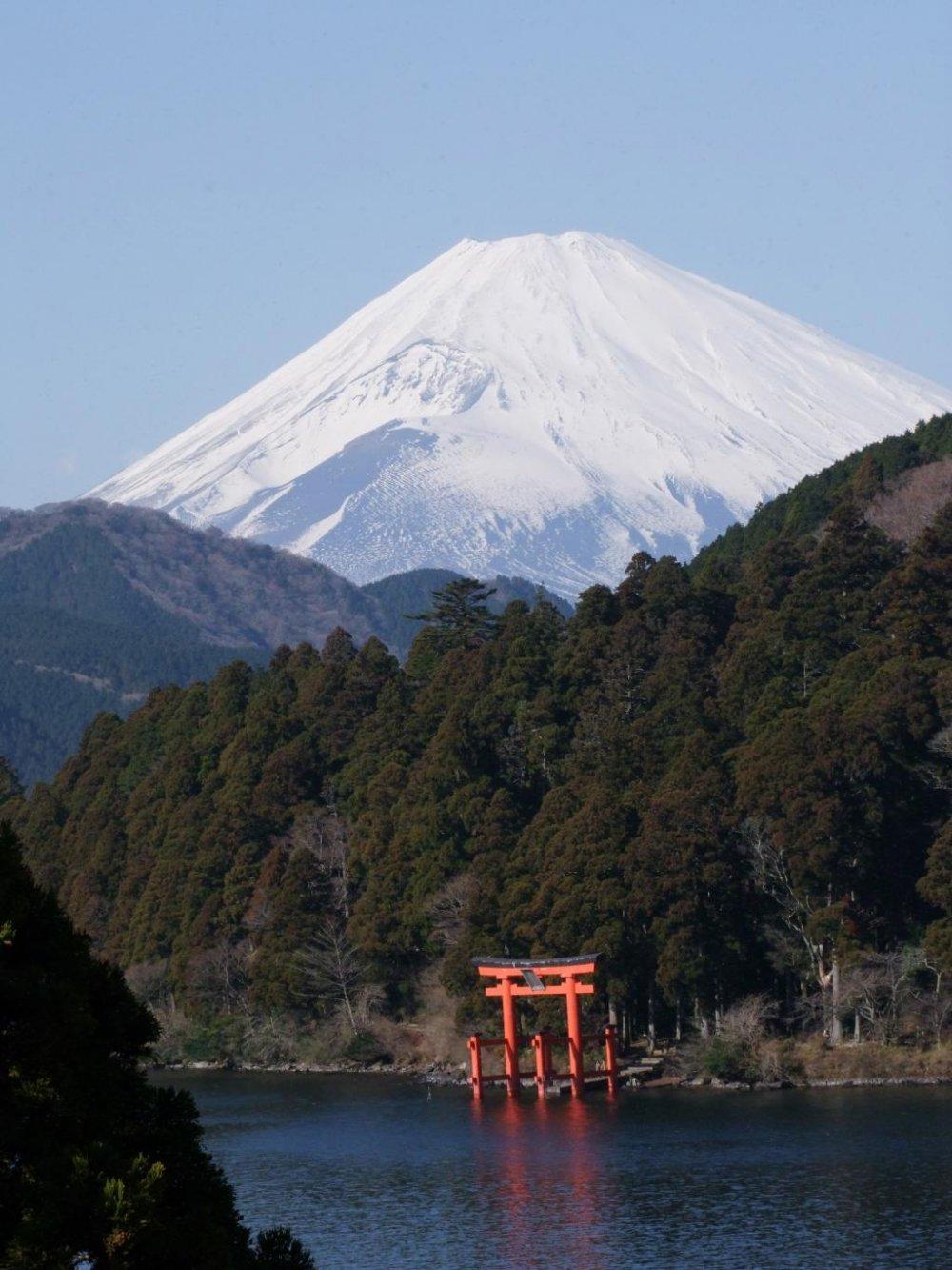 雪をかぶった富士山と箱根神社の赤い鳥居のコントラストが美しい
