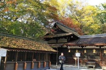 ศาลเจ้าคะวะอิ ในเกียวโต