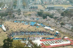 Himeji Castle's grounds during the spring picnic season