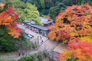 The autumn color at Engyo-ji Temple on Mount Shosha