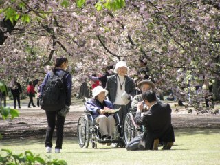 People of all ages go out to enjoy hanami