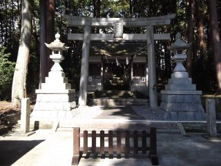 The shrine is surrounded by tall trees