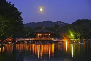 Nara Tokae et le Pavillon Ukimido