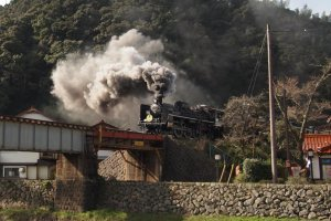 Thrill to the sight of a steam locomotive