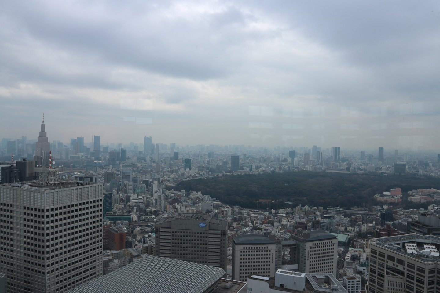 The View from the Tokyo Metropolian Building