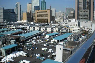Touring Tsukiji's Outer Market