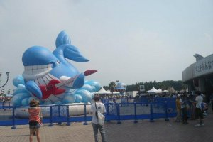A little inflatable whale greets you with a guitar