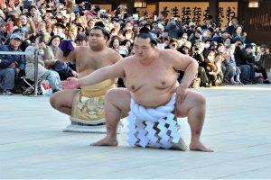 Japanese-born yokozuna, Kisenosato