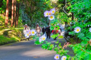 The walking course to Kawamura Castle Ruins Park