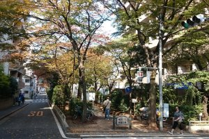 Kameidoryokudo Park