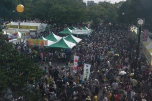 Brazil Festival: it's a big one!