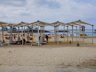 There are numerous free undercover seating options or you can rent beach lounges