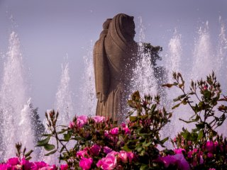 These pink roses provide a colorful foreground to this water fountain