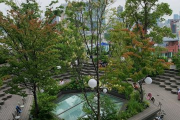 Tokyu Plaza Rooftop