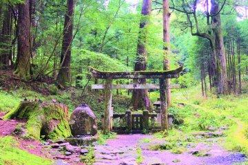 Takino Shrine in Nikko