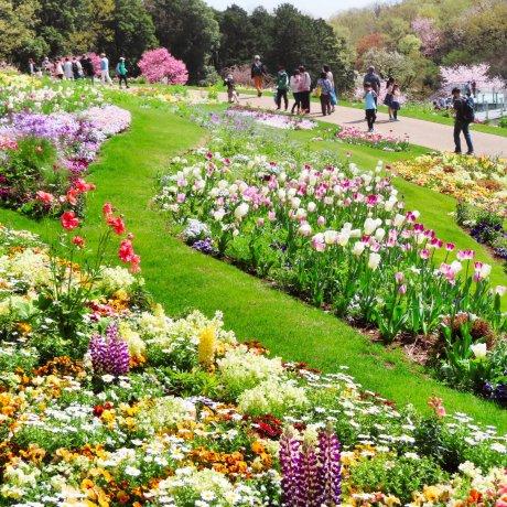 Yokohama Garden Necklace 2021