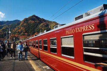 Journey Through Time: Paleo Express