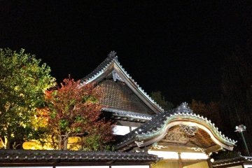 Night Lights at Tatemono-en
