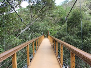 The suspension bridge looking from the Hiji Falls side of the nature path