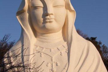 The Goddess of the White Robe