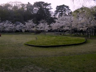 A small park on the Northeast side of the island with cherry blossoms and special grasses.