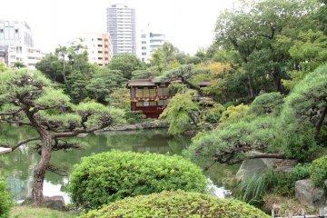โซระคุเอน...สวนสวยใจกลางโกเบ
