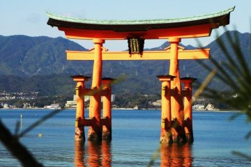 Hiroshima and Miyajima Private Tour