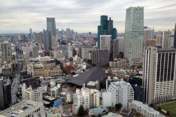 Half-day Guided Tokyo Bike Tour