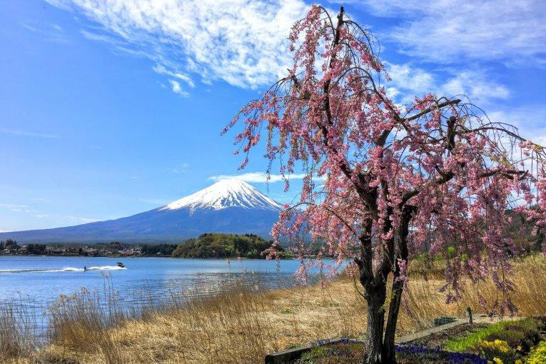Spectacular Mount Fuji Tour