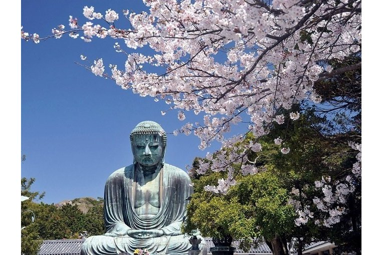 Discover Kamakura and Enoshima on a 1-Day Tour from Tokyo!