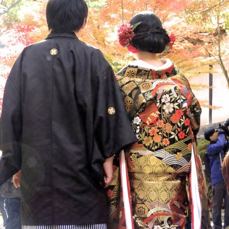 Want to See Kimono While in Kyoto?