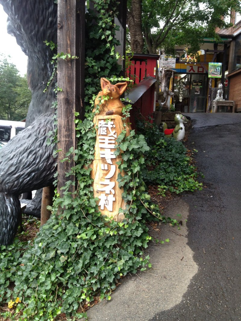 zao fox village japan guide
