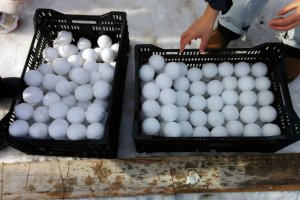 You must take great take care making snowballs. Snowballs that are too hard or too big are removed by judges.