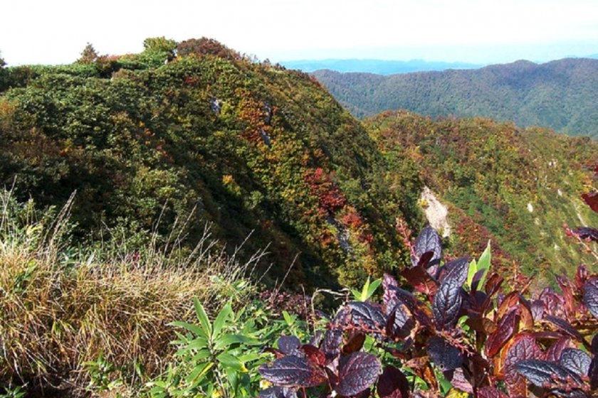 On top of the world atMount Komagatake, part of the Shirakami Sanchi