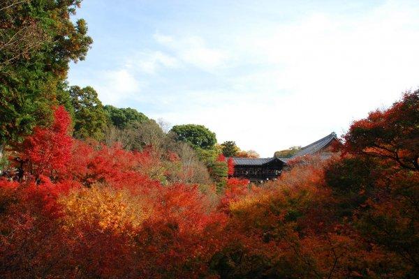 สะพาน Tsutenkyou หรือสะพานสู่สวรรค์ ภาพโปรโมทของวัดแห่งนี้