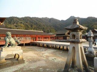 """ศาลเจ้า """"อิซึคุชิม่า"""" ศาลเจ้าที่สำคัญที่สุดบนเกาะ"""