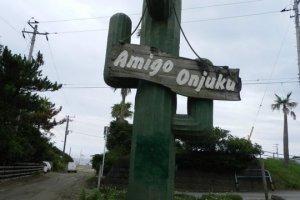 Cactus in Onjuku