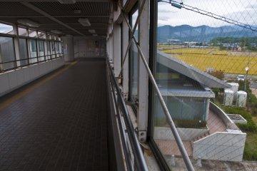 <p>On the footbridge, looking at the landscape&nbsp;</p>