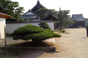 Bitchu Kokubunji