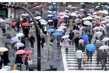 <p>Rainy Shibuya&nbsp;Crossing, Tokyo, Japan</p>