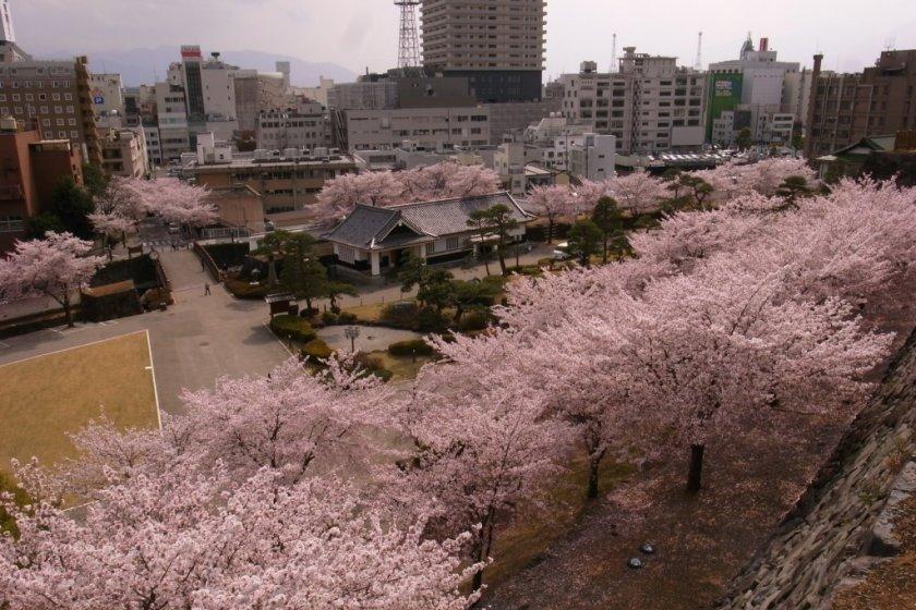 View of Kofu City