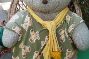 น้องหมีเพลินกับการชมซากุระ