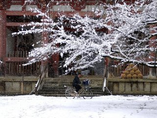 High school student struggling through the snow on a bicycle