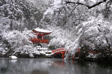 Snow at Daigo Temple