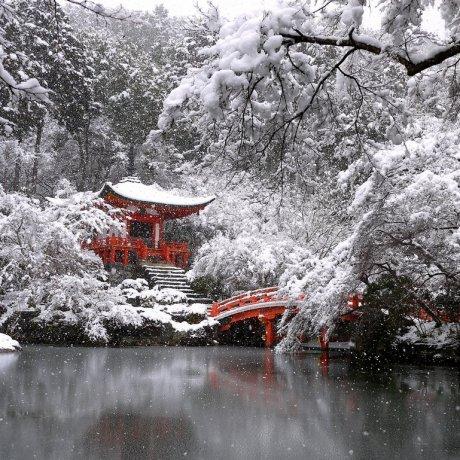 Tuyết trắng ở đền Daigo