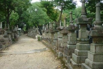 The ancient graveyard behind Koshoji Temple, Nagoya.