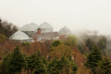 <p>The glasshouse on a misty morning on the hills of Kobe. Hiking trails to the glasshouse start from the ropeway station.</p>