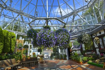 <p>Inside of the glasshouse, on a bright and clear morning. With all the herbs and different flowers there is a special and wonderful aroma in the air, but honestly, I find it impossible to describe it; you will need to go and experience it yourself please!</p>