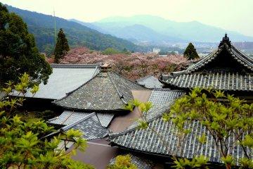 Miidera in Otsu